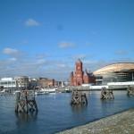 Cardiff Study